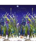 Piscina CAMUFLAJE OVALADA 730x366x120 cm Filtro 3,6 m³/h. piscinas desmontables